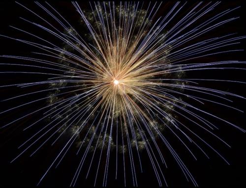 Nieuwjaarsgroet en wens